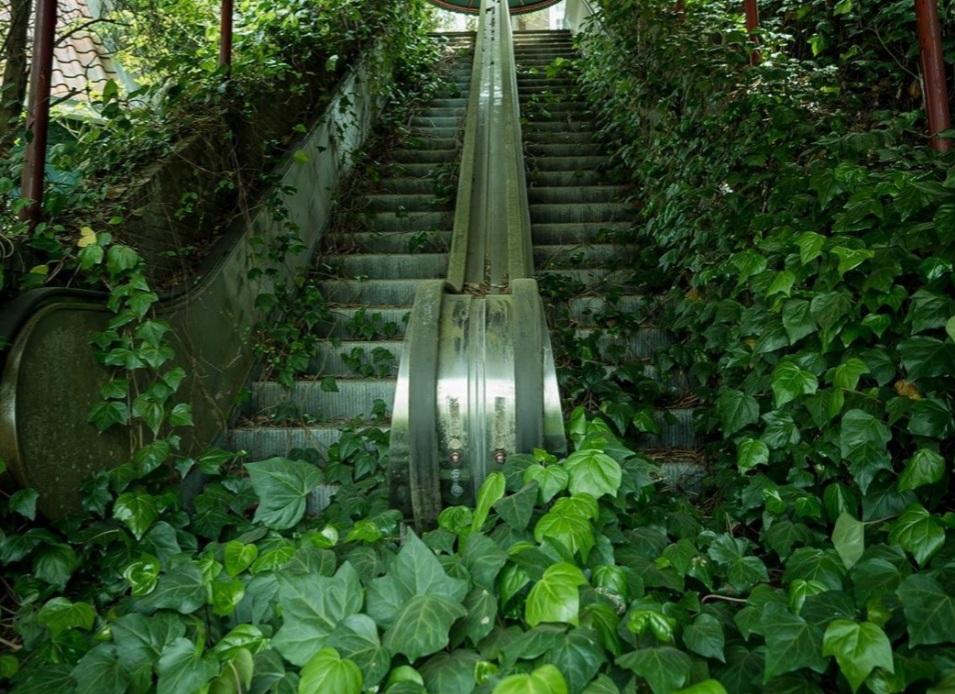 Foto de escada rolante abandonada NÃO é no Carrefour Usina