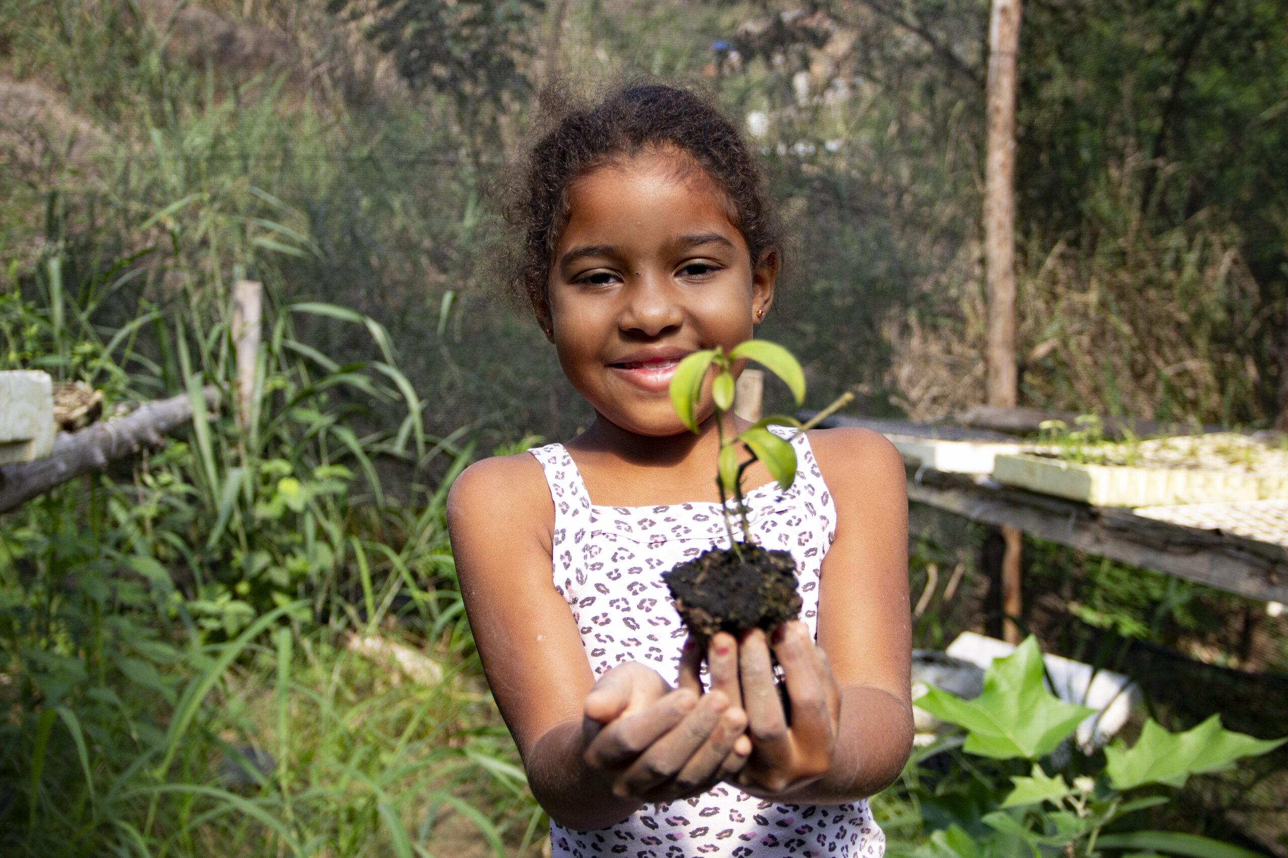 Projeto de agroecologia integra educação e segurança alimentar na Penha